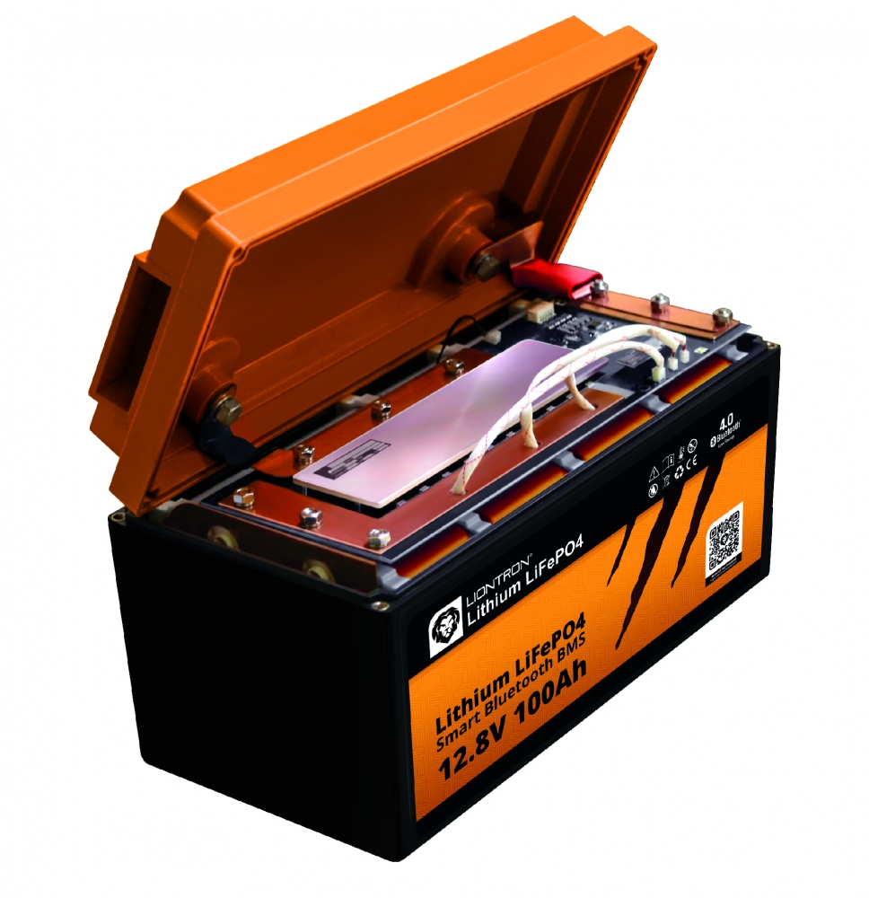 LIONTRON 9.9V 9Ah Lithium LiFePO9 Wohnmobil-Untersitz-Batterie mit  Bluetooth